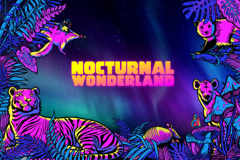 Nocturnal Wonderland (2021)