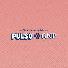 Pulso GNP (2021)